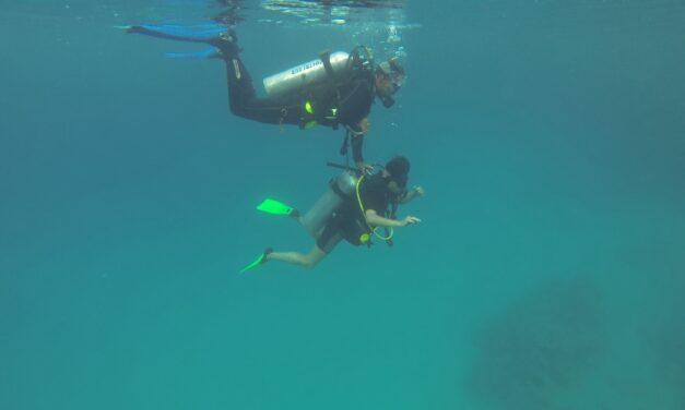 Dykkercertifikat / dykkerkursus